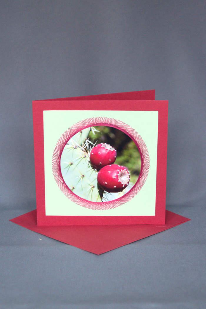 Geburtstagskarte oder Frühlingskarte Kaktus