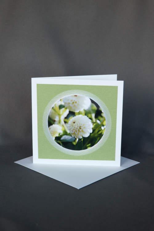 Weisse Dahlien auf Blumenkarte