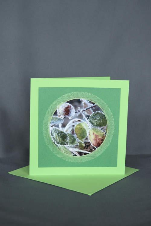 Blätter mit Raureif auf grüner Grusskarte