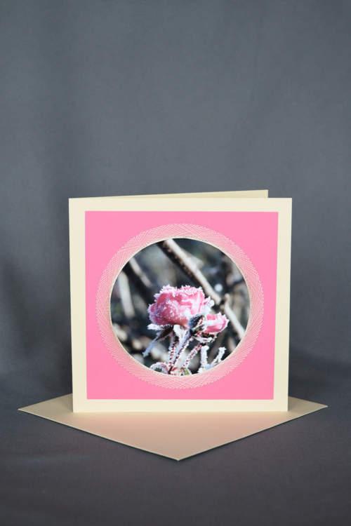 Pinke Rose mit Raureif auf gestickter Grusskarte