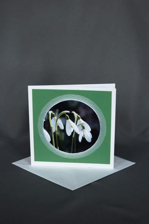 Weisse Schneeglöckchen auf grüner Geburtstagkarte